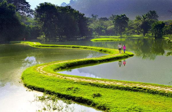 2012 金獎作品《馬來西亞太平園早安》